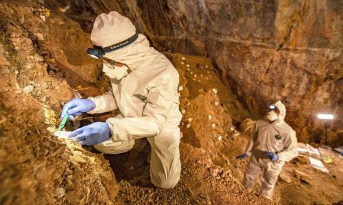 Stone Tools Suggest Earlier Human Presence In N. America