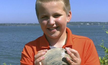 Rhode Island Boy Digs Up  Massive 2 1/2 Pound Mollusk