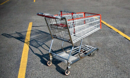 The Shopping Cart Theory… Expansion Pack
