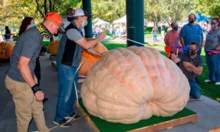 Giant Gourds Break Utah State Record At Weigh-Off In Utah