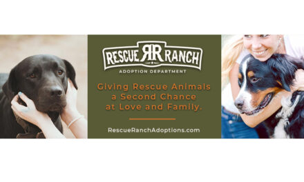 Rescue Ranch Launches Foster And Adoption Program