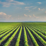Carolina Farm Credit Now Accepting Applications for the Corporate Mission Fund Grant Program