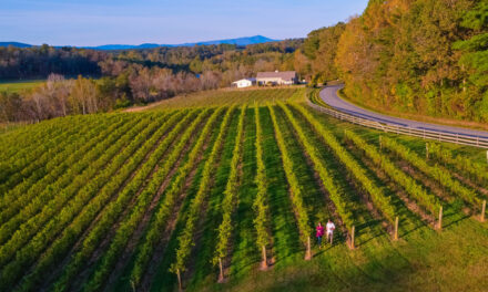 Surry Trail Reaches Milestone With Four New Wineries