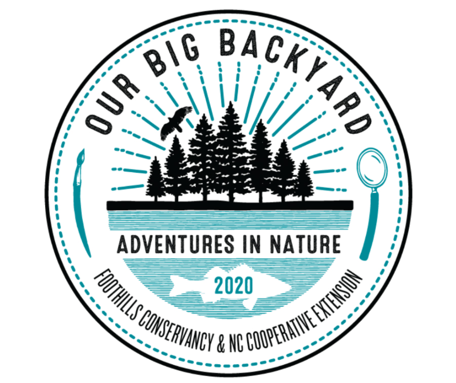 Registration Now Open For Our Big Backyard Summer Camp