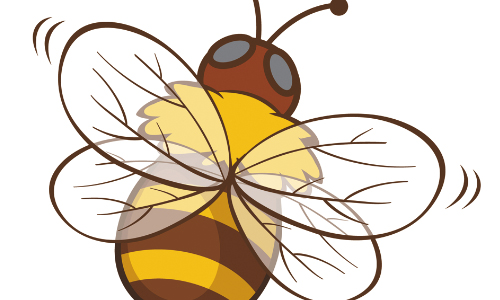 CSC Celebrates Pollinator Week With Family Bug Day, 6/24