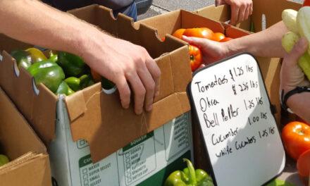 Catawba County Public Health Farmers Market Opens June 3