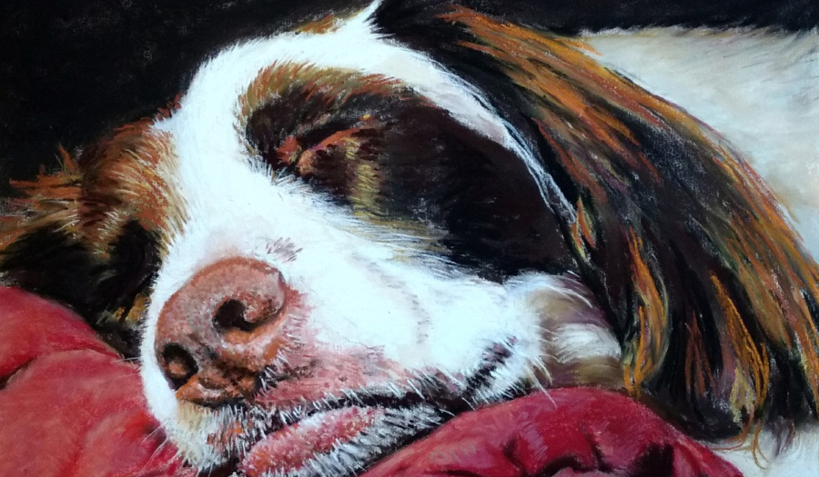 Caldwell Arts Council Presents New Exhibit Reflections In Pastel, July 9 – August 27