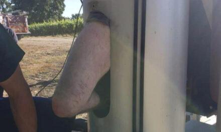 Man Stuck For Days Inside Giant Fan At California Vineyard