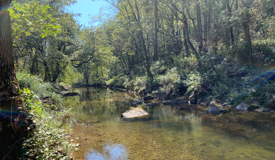 Foothills Conservancy Purchases 118 Acres Along River In Caldwell County For Pisgah National Forest