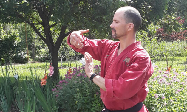 Discover The Benefits Of Tai Chi, Wednesdays With George Place