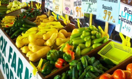 Seniors Morning Out Activities To Include Trips To Farmer's Market And Educational Programs